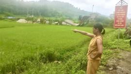 """Hà Quảng - Cao Bằng: Người dân """"kêu cứu"""" vì trạm nghiền đá trái phép gây ô nhiễm"""
