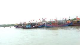 Thanh Hóa: Hơn 7000 phương tiện tàu thuyền đã vào nơi tránh trú bão an toàn