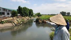 Người dân khốn khổ vì ô nhiễm ở Vĩnh Bảo (Hải Phòng): Sẽ kiểm tra đột xuất các trang trại