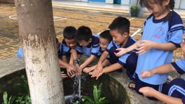 TP.HCM xây dựng trường học xanh