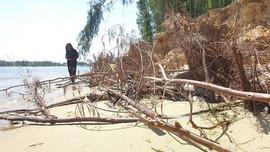 Quảng Nam: Lồng ghép nhiệm vụ thích ứng với biến đổi khí hậu vào kế hoạch phát triển kinh tế - xã hội