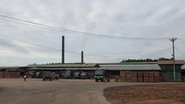 """Thái Nguyên: Nhà máy gạch tuynel HTX Phấn Mễ tiêu thụ """"đất tặc"""""""