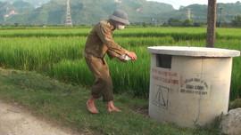 Phù Yên - Sơn La: Đẩy mạnh thu gom bao gói, chai lọ thuốc BVTV sau sử dụng