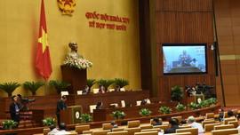 Quốc hội nghe báo cáo giải trình tiếp thu về Dự thảo Luật Bảo vệ môi trường (sửa đổi)