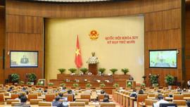 Quốc hội cho ý kiến dự thảo Nghị quyết chính quyền đô thị TP HCM