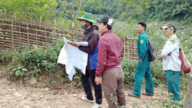 Điện Biên rà soát diện tích rừng để làm cơ sở chi trả dịch vụ môi trường rừng