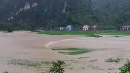 Lạng Sơn: Nhiều giải pháp ứng phó với biến đổi khí hậu
