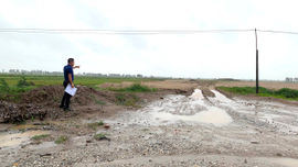 Hải Dương: Cần xử lý nghiêm những sai phạm tại Cụm công nghiệp Đoàn Tùng II
