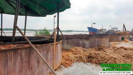 Thanh Hóa: Công ty Nam Cảnh bị đình chỉ vẫn ngang nhiên hoạt động