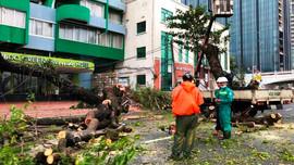 Tin cuối cùng về bão số 9, cảnh báo mưa to trên đất liền, sóng lớn trên biển, sạt lở đất ở một số huyện vùng núi