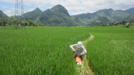 Phê duyệt kết quả điều tra, đánh giá chất lượng, tiềm năng đất đai tỉnh Sơn La
