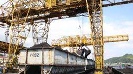 TKV: Tăng cường hoạt động sản xuất - kinh doanh trong quý IV