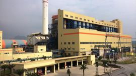 Nhiệt điện Thăng Long nỗ lực vì sự phát triển xanh, bền vững