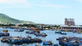 Đà Nẵng: Đường Việt Corp tiếp tục trúng gói thầu lớn ở BQL Dự án Nông nghiệp