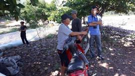 Nghệ An: Có 21 khu vực phải thiết lập hành lang bảo vệ bờ biển