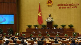 Quốc hội thảo luận về tình hình kinh tế - xã hội và ngân sách: Đưa ra định hướng phát triển phù hợp