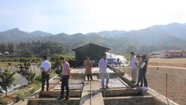 Sơn La: Tiếp tục kiểm tra hoạt động chế biến cà phê tại 2 đơn vị