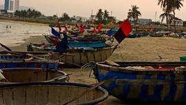 """Chùm ảnh Cuộc thi """"Sáng tác ảnh về Môi trường và Đa dạng sinh học thành phố Đà Nẵng"""": Lớn lên cùng những bãi biển"""