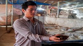 Giun quế - Giải pháp cải thiện môi trường trong chăn nuôi