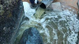 Hà Tĩnh: Phạt 392 triệu đồng hợp tác xã nuôi tôm xả thải ra môi trường