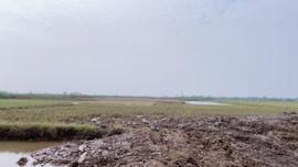 Thái Bình: Cần sớm xử lý việc bán đất ruộng trái phép tại xã Minh Tân, huyện Đông Hưng