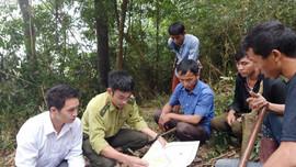 Nậm Pồ (Điện Biên): Hiệu quả từ giao đất giao rừng và chi trả dịch vụ môi trường rừng