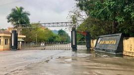 Ninh Bình: Doanh nghiệp vi phạm vẫn được tỉnh xin chuyển mục đích hàng chục hécta rừng