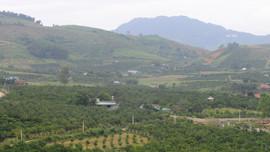 Quản lý đất đai góp phần phát triển kinh tế - xã hội bền vững