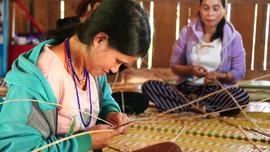 Quảng Nam: Giữ màu xanh cánh rừng Trường Sơn