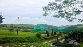 Thanh Hóa: Phát triển du lịch sinh thái, nghỉ dưỡng, giải trí trong rừng đặc dụng huyện Thường Xuân