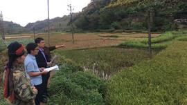 Mai Sơn (Sơn La): Đẩy mạnh thực hiện Chỉ thị số 01/CT-TTg về chấn chỉnh, tăng cường quản lý đất đai