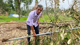 Quảng Ngãi: Nhọc nhằn khôi phục sản xuất sau bão