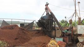 Mai Sơn (Sơn La): Tiếp tục kiểm tra, xử lý nghiêm vi phạm trong sơ chế nông sản
