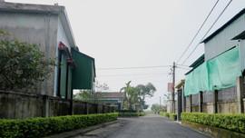 Hà Tĩnh: Xã điểm NTM hồi sinh môi trường xanh sau mưa lũ