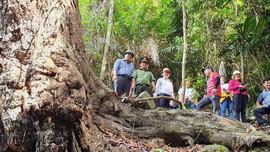 Quảng Nam:  Chuyển khu bảo tồn thiên nhiên Sông Thanh thành Vườn quốc gia
