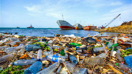 NPAP Việt Nam - Nền tảng thúc đẩy hợp tác giảm ô nhiễm nhựa