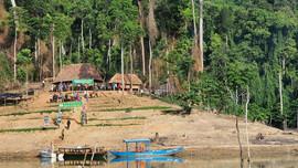 Quảng Nam: Thành lập Vườn quốc gia sông Thanh