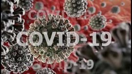 Phát hiện biến thể mới của virus SARS-CoV-2 tại Việt Nam