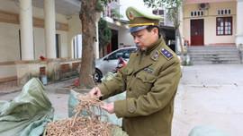 Lạng Sơn: Thu giữ gần 1 tấn nguyên liệu thuốc bắc nhập lậu