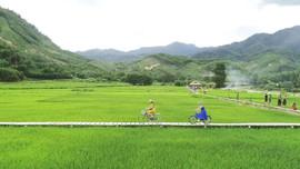 Thừa Thiên Huế: Phát triển du lịch nông nghiệp nông thôn, du lịch cộng đồng