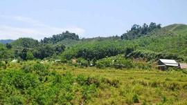 3 địa phương có bước tiến mới trong bảo tồn đa dạng sinh học
