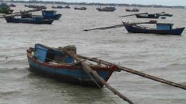 """Bình Định thực hiện phong trào """"Toàn dân tham gia bảo vệ nguồn lợi thủy sản"""""""