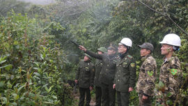 Lào Cai: Thầm lặng những người lính gác rừng