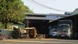 Bình Định: Công ty Nhật Nam Hưng tiếp tục bị xử phạt do xây dựng công trình không phép