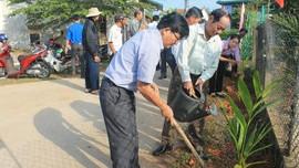 Quảng Ngãi: Phấn đấu trồng cây xanh phân tán cao gấp 1,5 lần so với năm ngoái