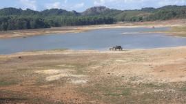 Nghệ An: Chủ động phòng chống hạn hán, thiếu nước, xâm nhập mặn