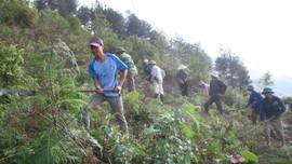 Lai Châu: Tăng cường phòng cháy chữa cháy rừng mùa khô