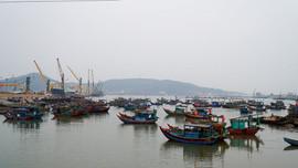 Thanh Hóa: Đẩy mạnh công tác bảo vệ nguồn lợi thủy sản vùng ven biển