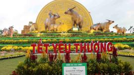 Gia đình nhà Trâu rộn ràng đón tết Tân Sửu 2021 tại thành phố Quy Nhơn