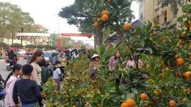 TP. Thái Nguyên: Rực rỡ đường phố ngày giáp Tết